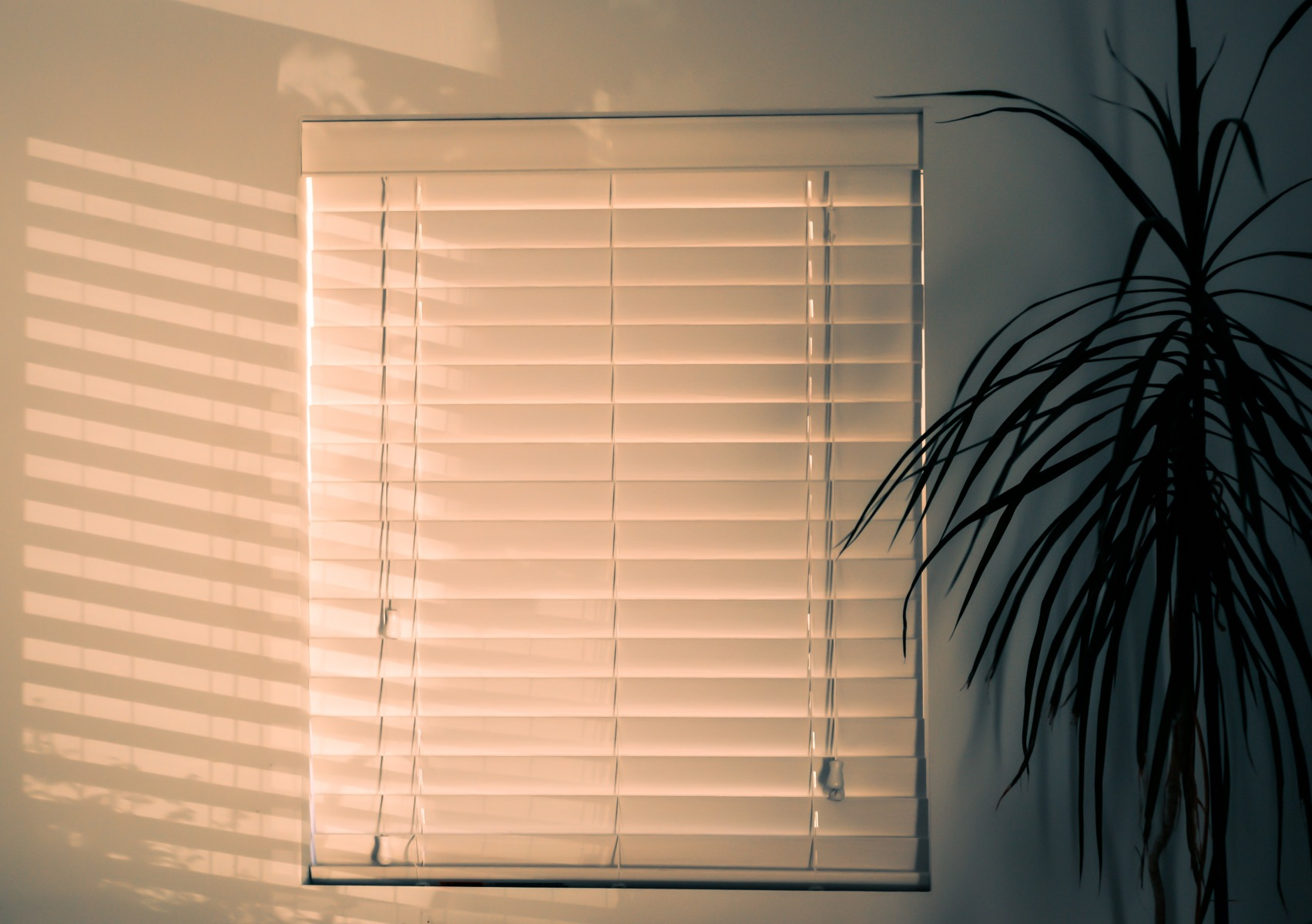 no tape white wooden venetian blind with slats closed